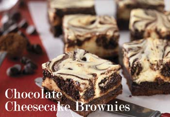 KAF1219 brownies